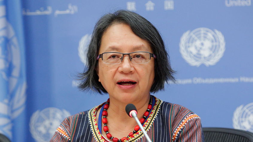 United Nations Special Rapporteur, Victoria Tauli-Corpuz
